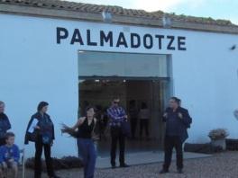 Palmadotze